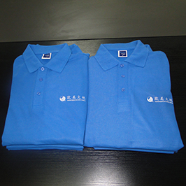 Поло цамц өөрчлөн хэвлэх дээж А3 футболк хэвлэгч WER - E2000T