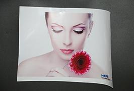 Self Adhesive Vinyl 3.2m (10 feet) эко уусгагч хэвлэгч WER-ES3202 4